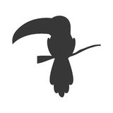 Silhouette with toucan wild animal Stock Photo