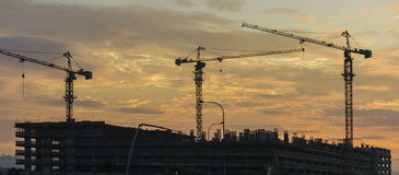 Silhouette of tower cranes during sunset Royalty Free Stock Photos
