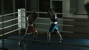 Silhouette training sparring of two boxers on a ring stock video