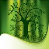Silhouette tree Stock Photo