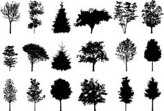 Silhouette a tree Stock Photos