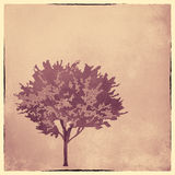 Silhouette of a tree - art illustration Royalty Free Stock Images