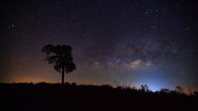 Silhouette of tree and beautiful milkyway on a night sky Stock Image
