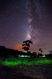 Silhouette of tree and beautiful milkyway on a night sky Stock Photo