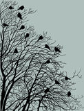 Silhouette tree black birds. On background dark sky Stock Image