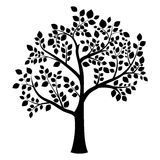 Silhouette of a tree. Black silhouette of a deciduous tree on a white background Royalty Free Stock Photos