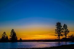 Silhouette of a Tree Beside Body of Water Under Blue and Yellow Sky during Sunset Stock Image