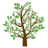 Silhouette tree with brown trunk and green leaves Royalty Free Stock Photo