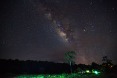 Silhouette of tree with cloud and beautiful milkyway on a night Royalty Free Stock Photo