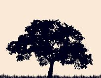 Silhouette of tree with grass. Vector Stock Photos