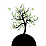 Silhouette of a tree with green Royalty Free Stock Image