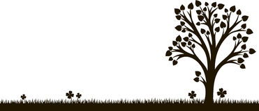 Silhouette of tree with leaves at grass Stock Photography
