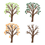 Silhouette of tree with leaves Royalty Free Stock Photo