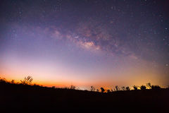 Silhouette of Tree and Milky Way. Long exposure photograph Royalty Free Stock Photography