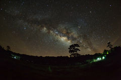 Silhouette of Tree and Milky Way at Phu Hin Rong Kla National Pa Royalty Free Stock Image
