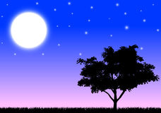 Silhouette of a tree in the night stock illustration