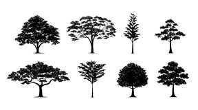 Silhouette tree set. Silhouette tree.Vector trees in silhouettes set Royalty Free Stock Photo