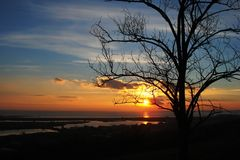 Silhouette of a tree and the shore at sunset Stock Photo