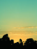 Silhouette of Tree during Sunset Royalty Free Stock Photos