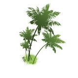 Silhouette of tree. Vector illustration Royalty Free Stock Image