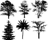 Silhouette trees Royalty Free Stock Photos
