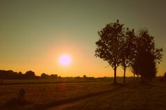 Silhouette of Trees Against Sunset Stock Photo