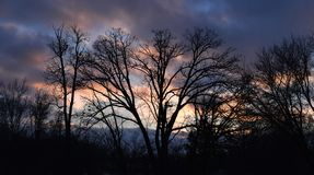 Silhouette Trees Against Sunset Sky. Bare trees in November against a beautifully colored sunset sky Stock Photos