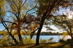 Silhouette of Trees Along the River Bank. These are silhouette of trees along the banks of the Mississippi River. This is at the Coon Rapids Dam Regional Park In Royalty Free Stock Image