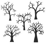 Silhouette of trees Royalty Free Stock Photography