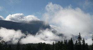 Silhouette of Trees and Mountain With White Clouds during Daytime Royalty Free Stock Photo