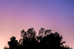 Silhouette of trees on mountains and beautiful sky in the morning. Silhouette of trees on mountains and beautiful sky Stock Photography