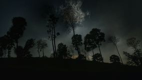 Silhouette of Trees during Night Time Royalty Free Stock Images