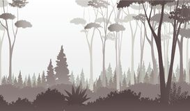 Foggy forest view, vector illustration. Silhouette of trees and shrubbery in deep forest with fog. Early morning panorama in dark forest Stock Image