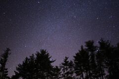 Silhouette of Trees Under Black Skies With Stars during Night Time Royalty Free Stock Image