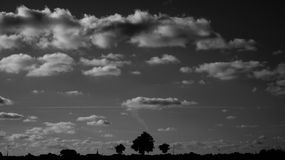 Silhouette of Trees Under Nimbus Clouds during Daytime Royalty Free Stock Photos