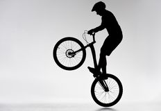 Silhouette of trial biker performing bunny hop. On white royalty free stock photo