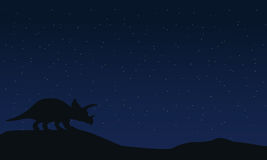 Silhouette of triceratops at night landscape Royalty Free Stock Images