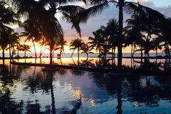 Silhouette tropicale de mer de coucher du soleil de paumes Images libres de droits