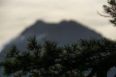 Silhouette trouble de montagne avec la branche de pin dans le premier plan photo libre de droits