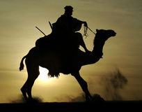 Silhouette of Tuareg rider and camel rising. A silhouette of a Tuareg rider and camel rising after mounting in the desert stock image