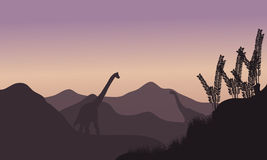 Silhouette of two brachiosaurus in fields Stock Images