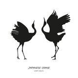 Silhouette of the two dancing Japanese crane on a white backgrou Royalty Free Stock Images