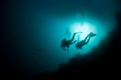 Silhouette of two divers. Two scuba divers hoover atop a reef looking for critters royalty free stock images