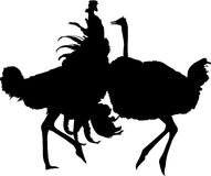 Silhouette of two fighting ostriches. Digitally hand drawn vector silhouette, black isolated on white background Stock Images