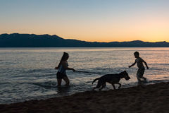 Silhouette of Two Kids Playing With Dog on Lake Shore Stock Photography