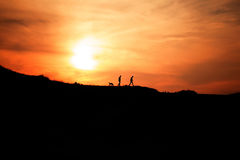 silhouette of two mans and the dog. Stock Photography