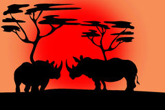Silhouette two rhinos in the sunset Stock Image