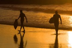 Silhouette of two surfer at yellow sunset Royalty Free Stock Photo