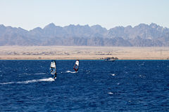 Silhouette of two windsurfers Royalty Free Stock Image