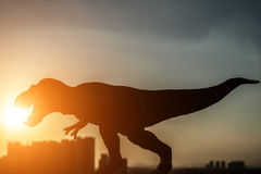 Silhouette of tyrannosaurus and buildings in a sunset time Royalty Free Stock Photography